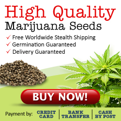 Buy Cannabis Seeds Canada