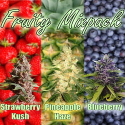 Fruity Mix Cannabis Seeds For Sale