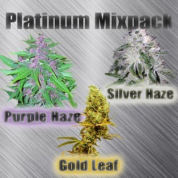 Platinum Mix Cannabis Seeds