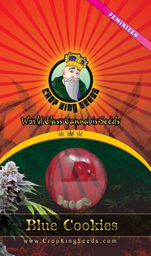 Blue Cookies Cannabis Seeds