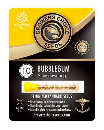 Buy Bubblegum Autoflower Seeds