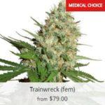 Train Wreck Marijuana Seeds