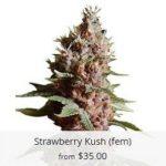 Strawberry Kush Marijuana Seeds