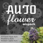 Buy Autoflower Mix Pack
