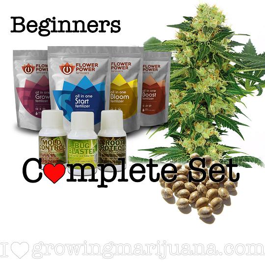 Medical Marijuana Grow Set
