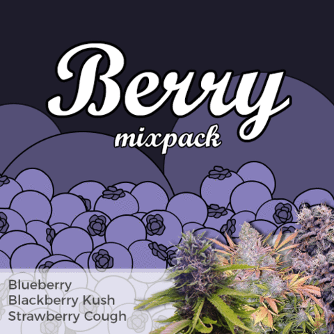 Berry Mixpack Cannabis Seeds