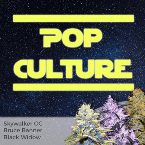 Pop Culture Mixpack Cannabis Seeds