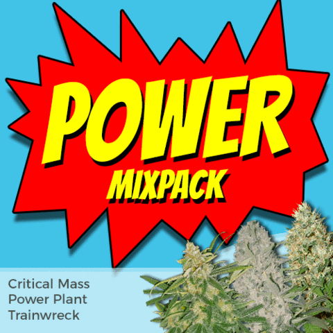Power Mixpack Cannabis Seeds