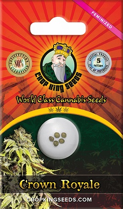 Crown Royale Cannabis Seeds