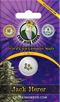 Buy Jack Herer Autoflowering Seeds