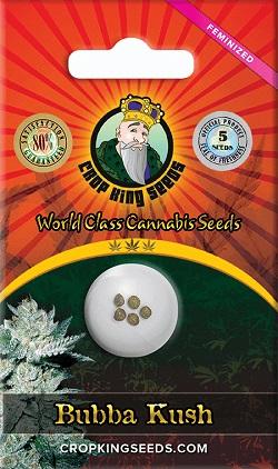 Buy bubba kush feminized cannabis seeds