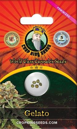 Gelato Cannabis Seeds