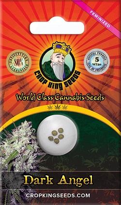 Buy Dark Angel Cannabis Seeds