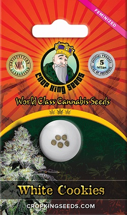 White Cookies Cannabis Seeds