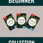 Beginner Cannabis Seeds Mix