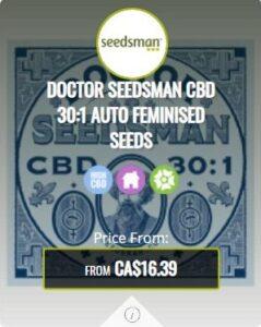 Doctor Seedsman CBD 30.1 Autoflowering Seeds For Sale
