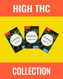 High THC Cannabis Seeds Mix