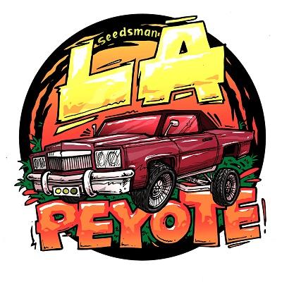 LA Peyote Kush Feminised