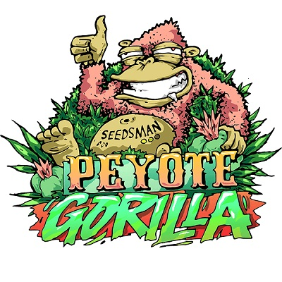 Peyote Gorilla Feminised