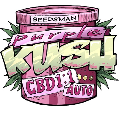 Purple Kush CBD Auto