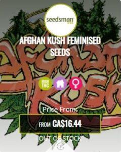 Afghan Kush Feminized Seeds For Sale