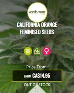 California Orange Feminized Seeds For Sale