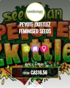Peyote Zkittlez Feminized Seeds For Sale